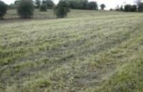 grasslandmanagement41