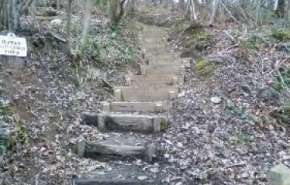 Path and steps
